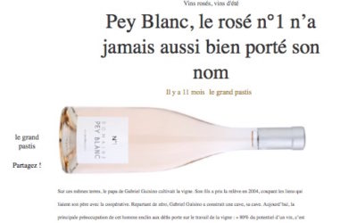 "Press review ""Pey Blanc, Rosé N ° 1 has never been so good!"""